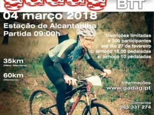 Lista de anúncios | BikeMarket pt